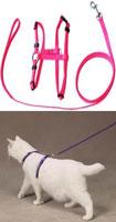 Н-образная шлейка для кошки