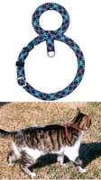 Шлейка для кошки восьмеркой